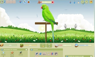 Birdrama - Your new bird