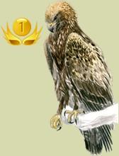 Bird breeder rankings by presence days